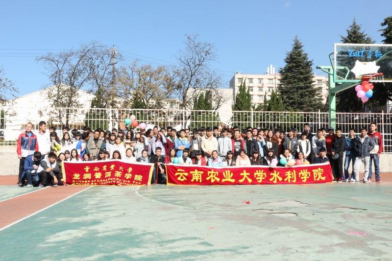 云南农业大学龙润普洱茶学院图片